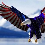 4th of july - Independence Day - Howard SEM Group - Digital Marketing Agency