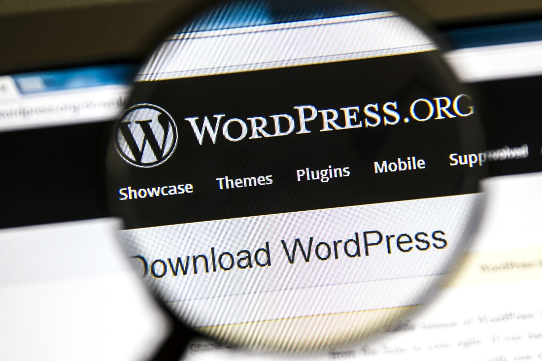 WordPress - web design - 5 Reasons Why WordPress Is the Best Business Website Platform | Howard SEM Group
