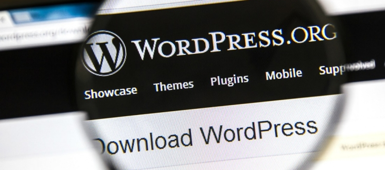 5 Reasons Why WordPress Is the Best Business Website Platform!